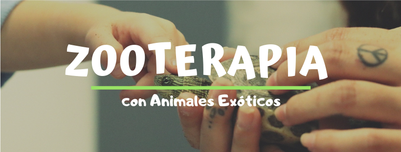 ZOOTERAPIA